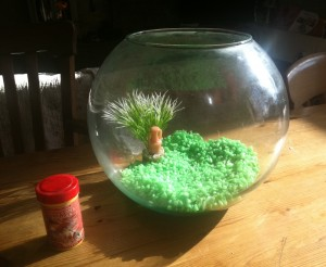 A fishbowl for the tadpoles