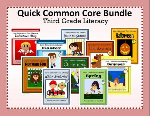 Quick Common Core Literacy Bundle for Third Grade