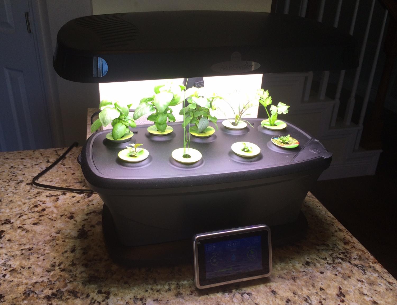 Indoor gardening with an AeroGarden